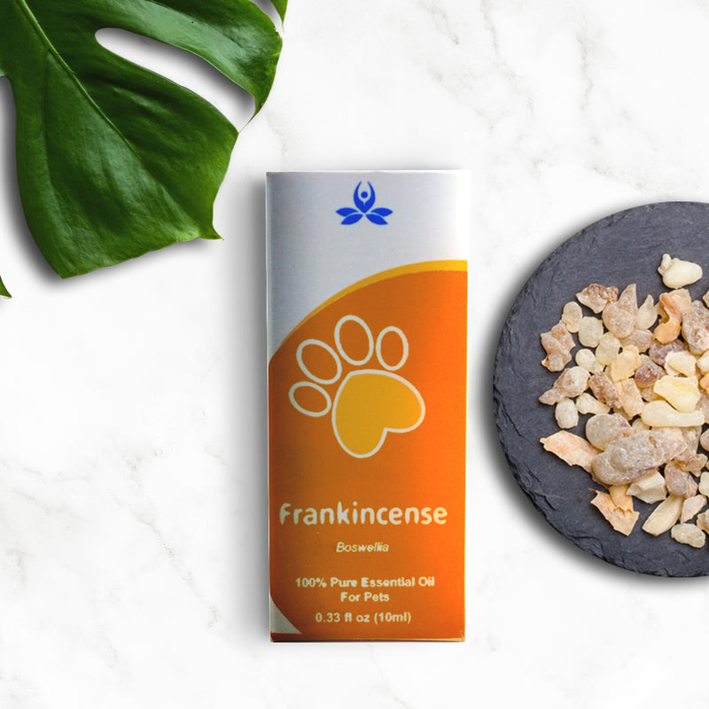 Frankincense oil for Pets