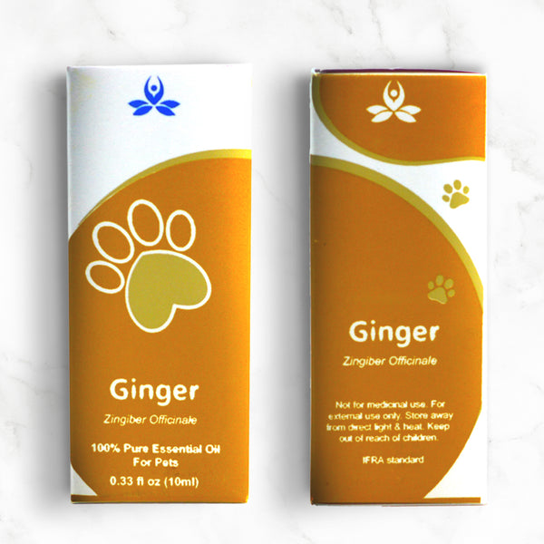 Pet Ginger Essential Oil