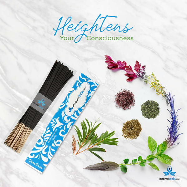 "Ocean Breeze Incense 8"" 12 Sticks"