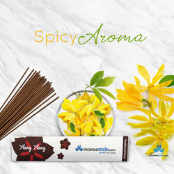 "Ylang Ylang Incense 8"" 10 Sticks"