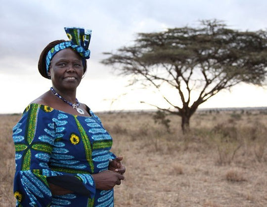 Wangari Maathai: One Seed At a Time