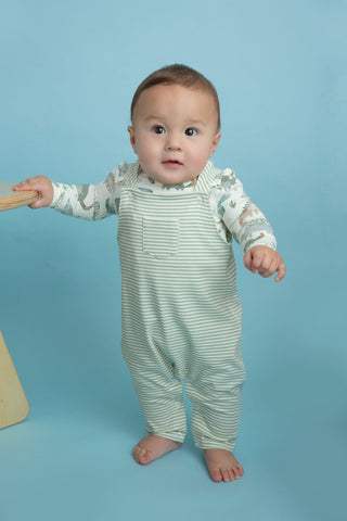 Angel Dear Pocket Overalls - Crayon Dino Stripe