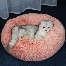 Load image into Gallery viewer, Fluffy Cat Bed [NEW Arrival!]
