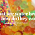What are Water Beads?