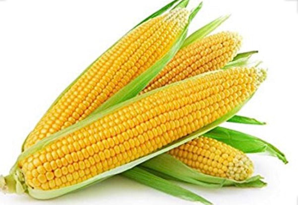 Corn (cob single)