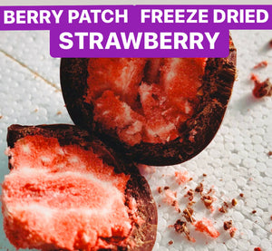 Berry Patch Strawberries (freeze dried | chocolate coated)