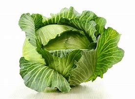 Cabbage (green)