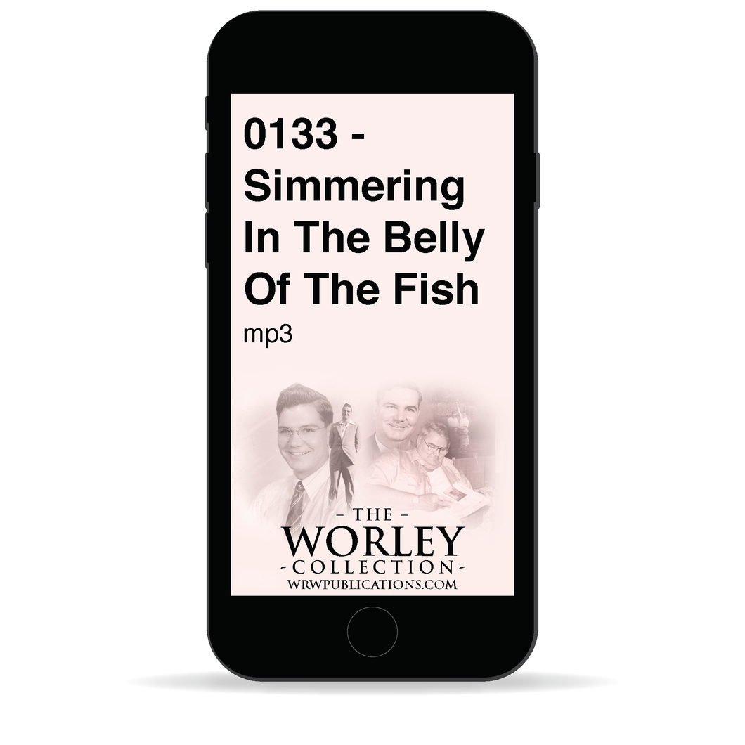 0133 - Simmering In The Belly Of The Fish