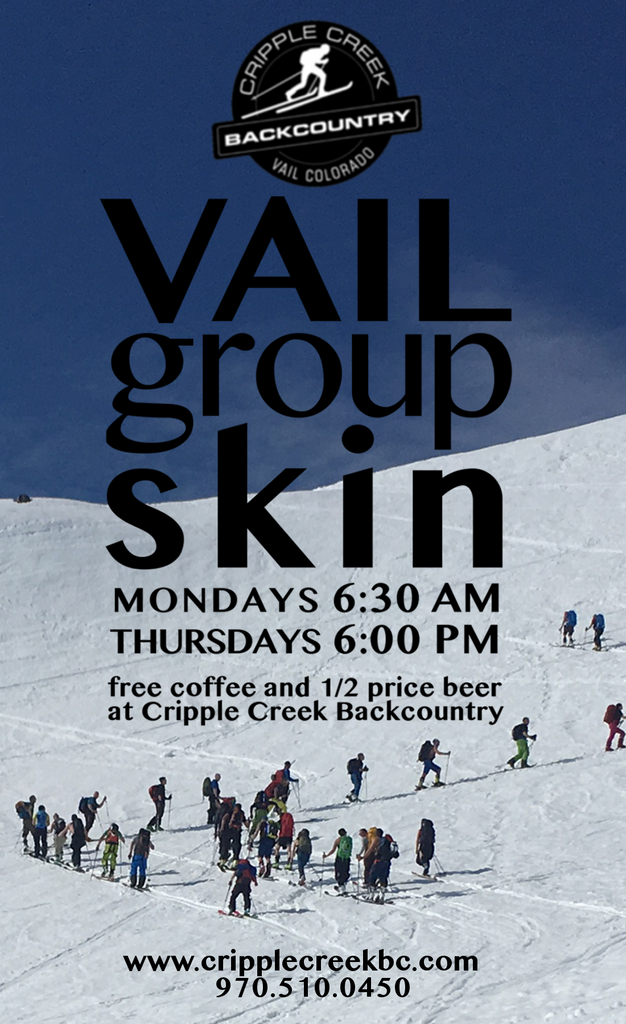 Vail Group Skin Poster