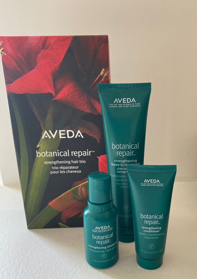 Aveda Botanical Repair Set
