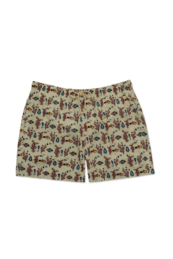Men's Swimming Trunks - Sharkcocky