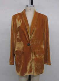 Velvet Single Breast Blazer