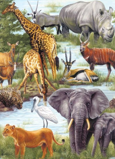 Springbok Animal Kingdom 60 Piece Puzzle