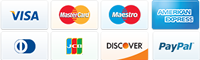 VISA, Mastercard, Maestro, Discover, Diners Club, JCB, Paypal