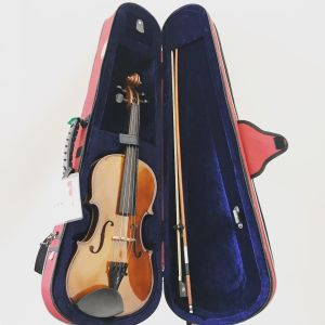 Chinese Violin Outfit Labelled Stentor II