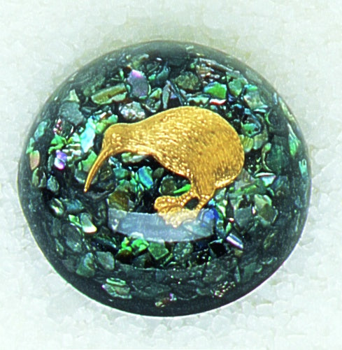 DK45 Kiwi Domed Paperweight