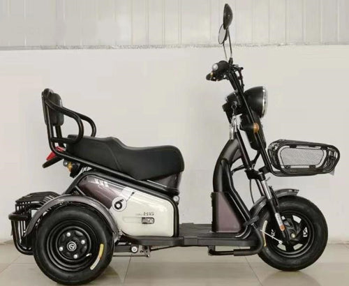 T3 - Mobility Tricycle