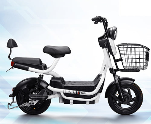 Z3 2 Seater Sports eBike White