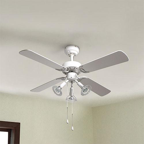 Eurolux Premier Ceiling Fan With Lights