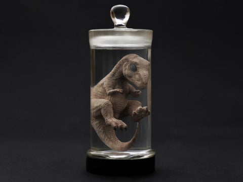 Image of (REBOR) Oddities Tyrannosaurus Rex Foetus Wet Specimen with Light Up Base
