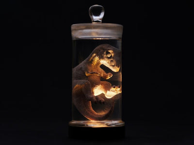 (REBOR) Oddities Tyrannosaurus Rex Foetus Wet Specimen with Light Up Base
