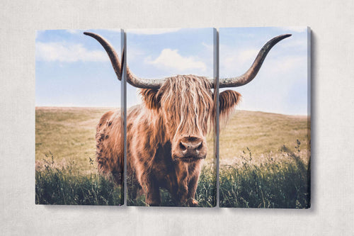 [wall art] - Brown Highland Cow