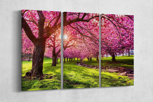 [canvas wall decor] - Cherry Tree Blossom print