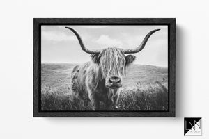 Highland cattle black and white print