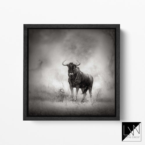 Wildebeest canvas wall art
