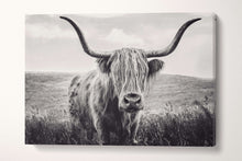 Load image into Gallery viewer, long haired cattle black and white wall decor
