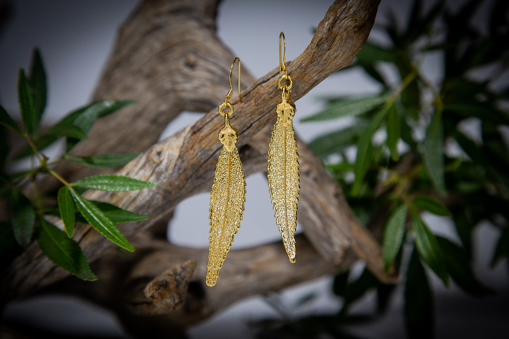 Christmas Bush of NSW Leaf Gold Earrings