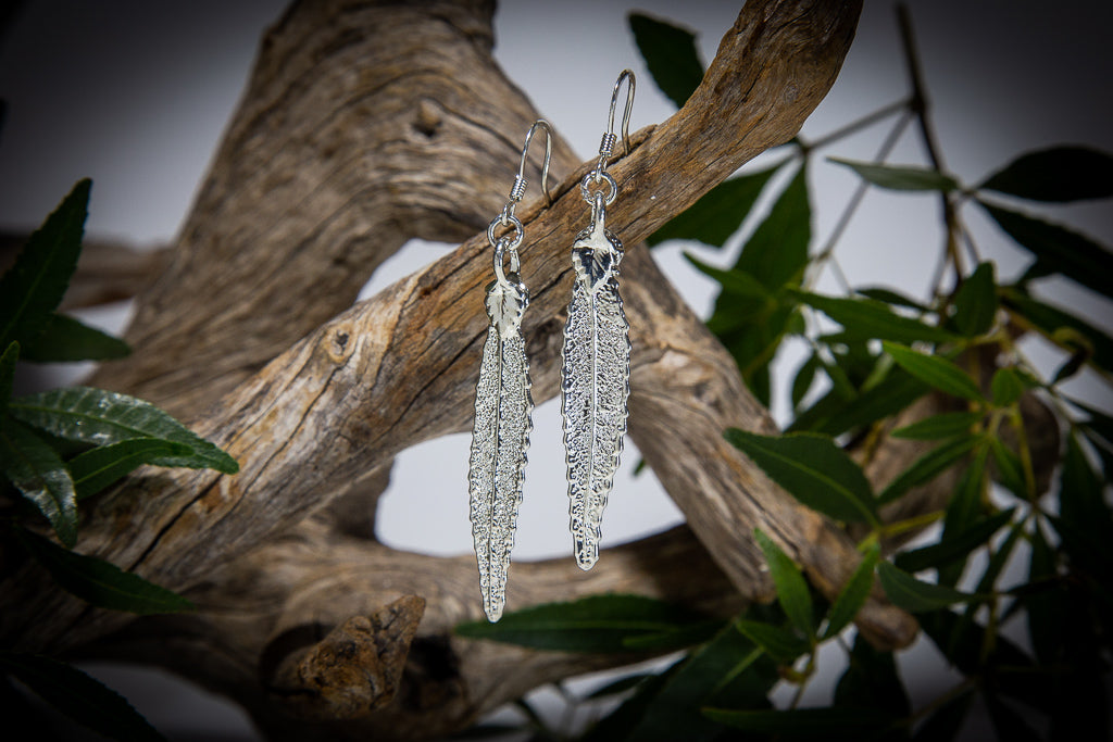 Christmas Bush of NSW Leaf Silver Earrings