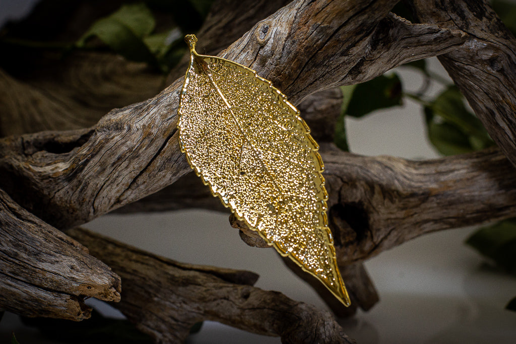 Eucalyptus Leaf Gold Brooch