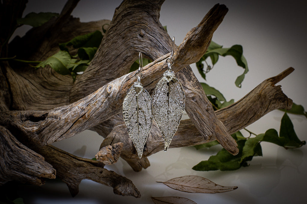 Eucalyptus Leaf Silver Earrings