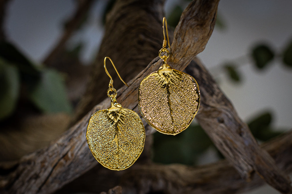 Apple Gum Eucalyptus Leaf Gold Earrings