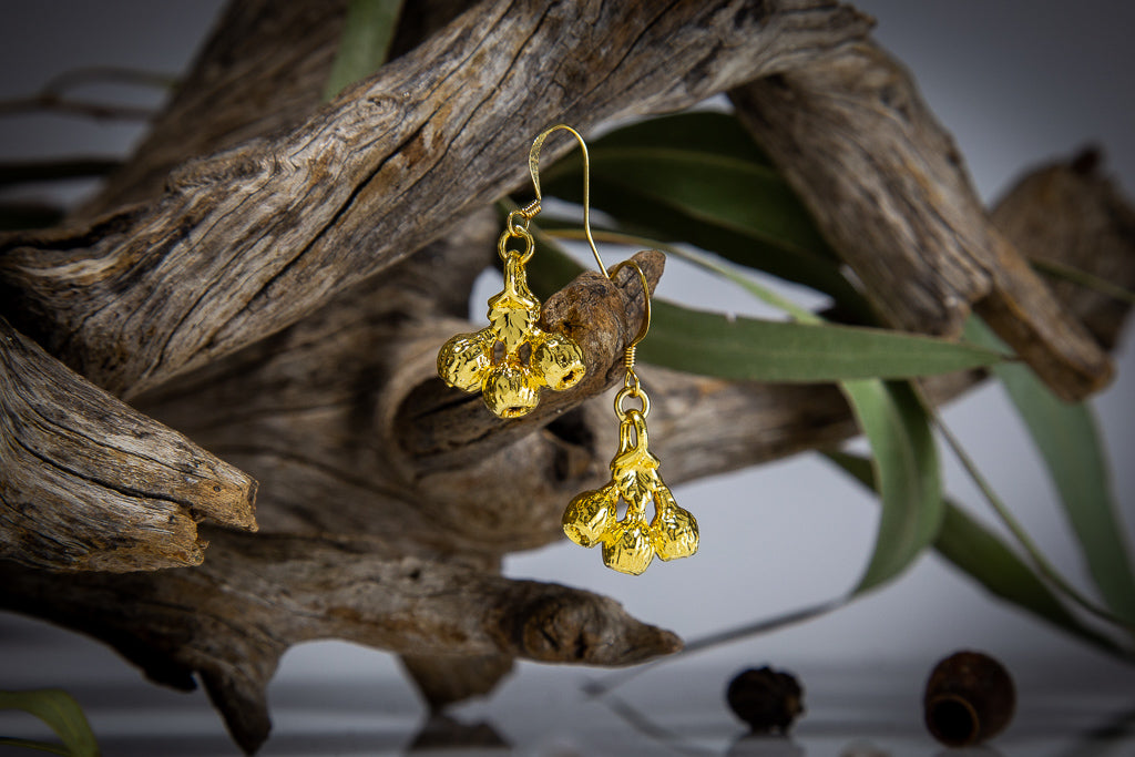 Eucalyptus Mallee Gum Nuts Gold Earrings