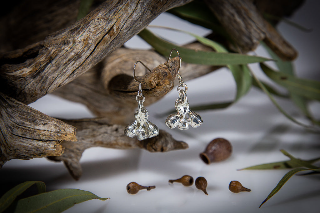 Eucalyptus Mallee Gum Nut Silver Earrings