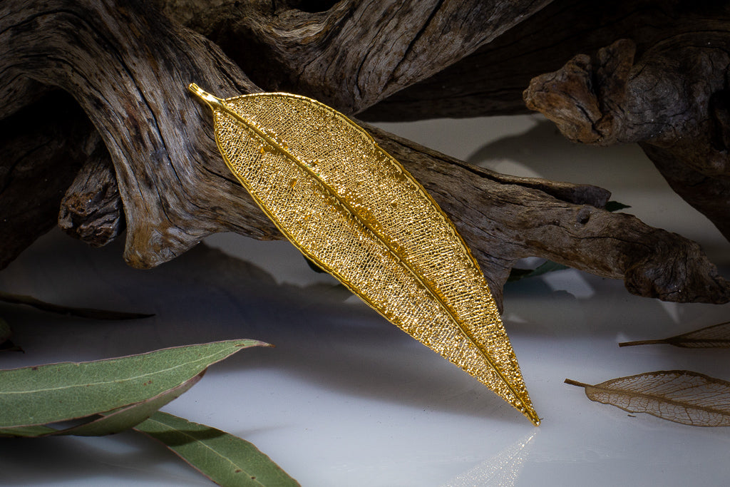Red Gum Eucalyptus Leaf Gold Brooch