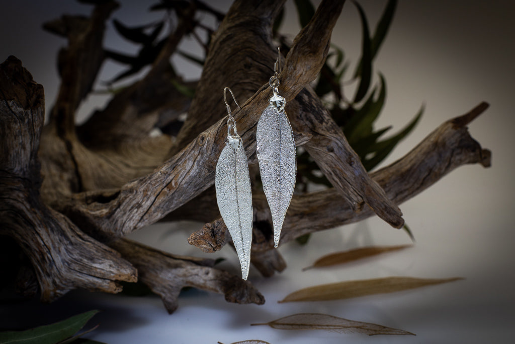 Red Gum Eucalyptus Leaf Silver Earrings