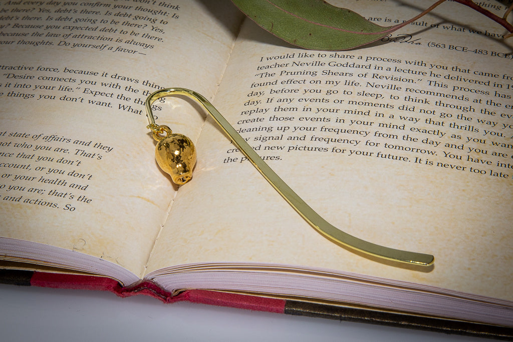 Eucalyptus Scribbly Gum Nut Gold Bookmark