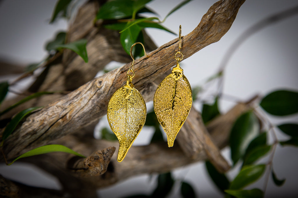 Lilly Pilly Leaf Gold Earrings