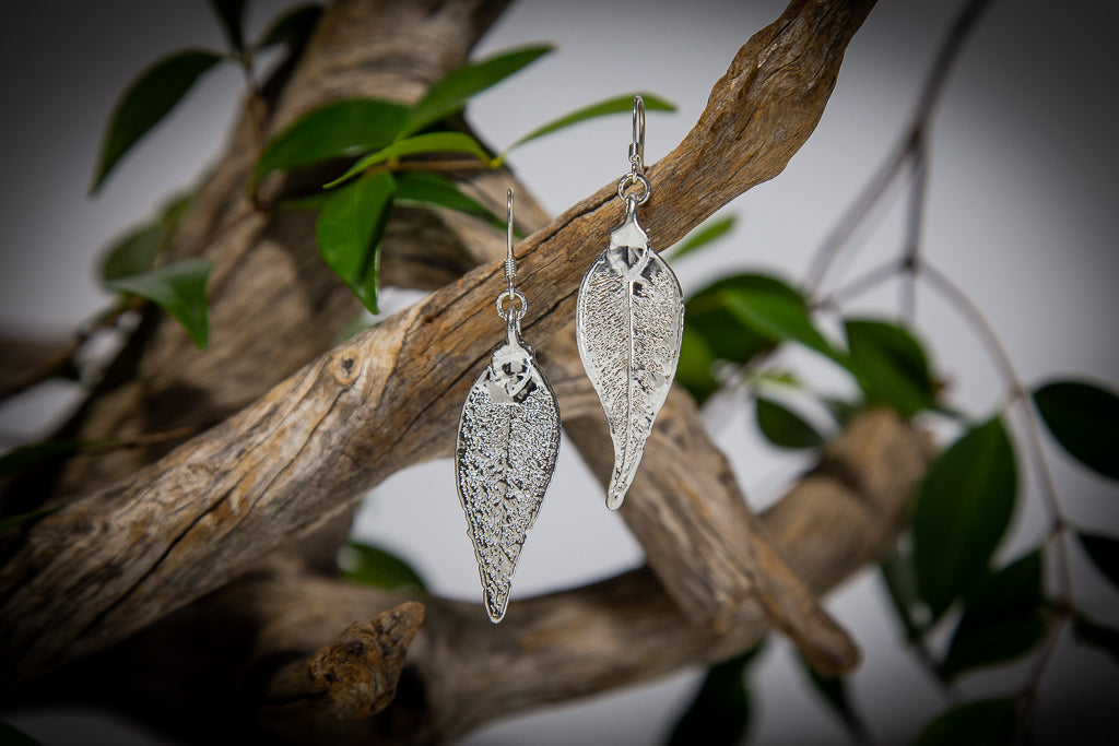 Lilly Pilly Leaf Silver Earrings
