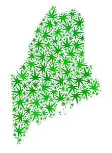 How to Stay Compliant with Maine's Child-Resistant Marijuana Packaging Rules