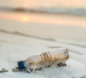 Ready to Plastic Free July?