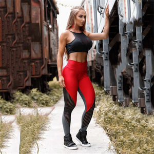 Vinum Leggings - Polonium Co.