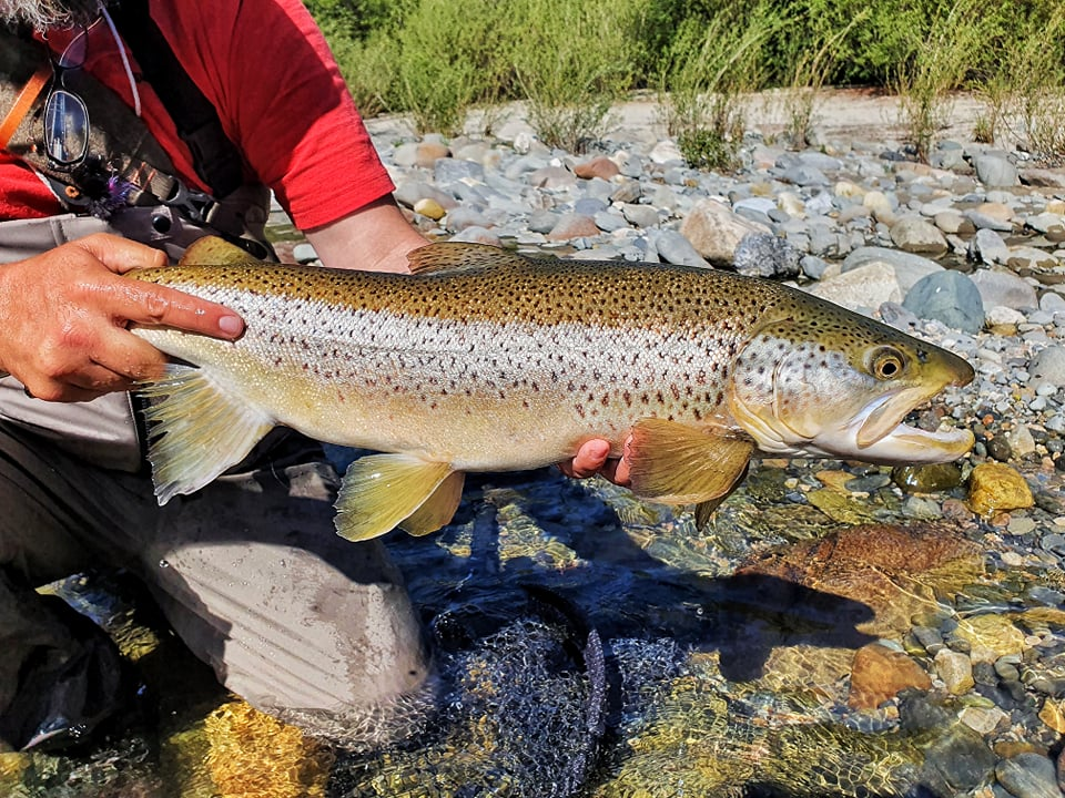 The South Island - Fly Fishing and the people Part 1