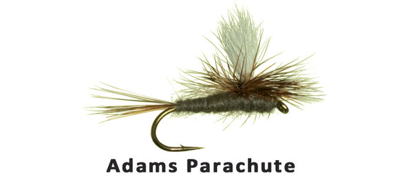 Parachute Adams - Flytackle NZ