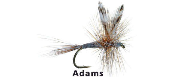 Adams - Flytackle NZ