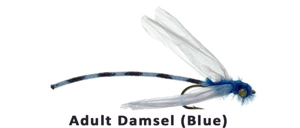 Adult Damsel (blue) #14 - Flytackle NZ