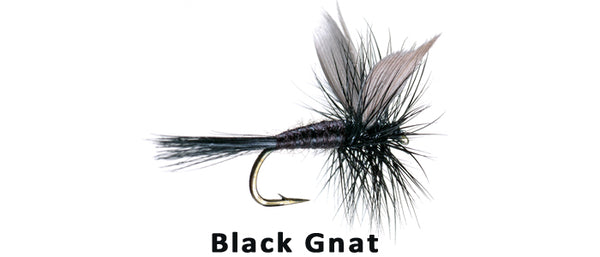 Black Gnat - Flytackle NZ